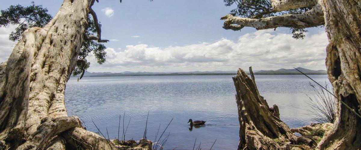 Header-128937-Myall-Lakes-National-Park-Image-JohnSpencerOEH-