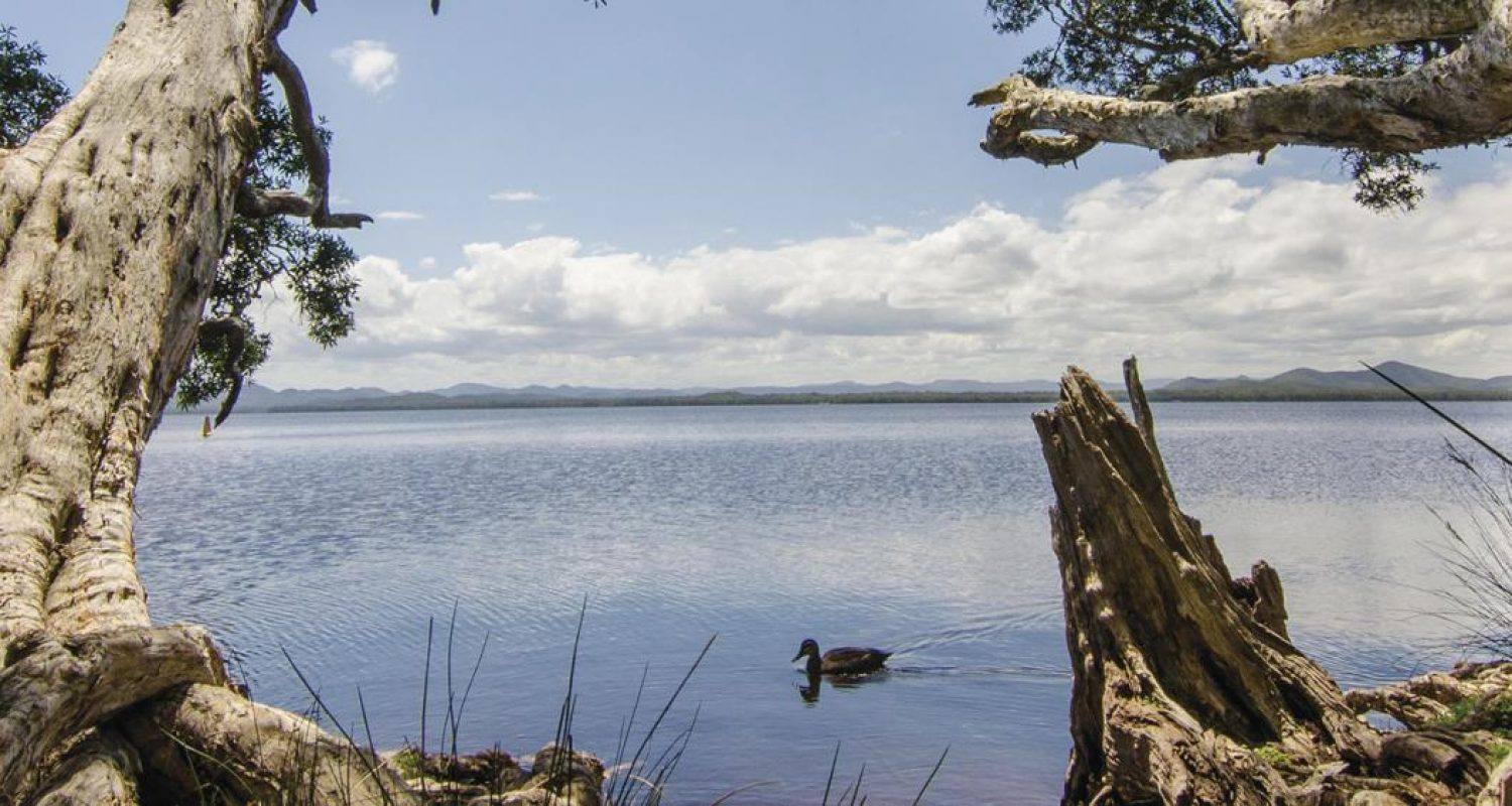 Header-128937-Myall-Lakes-National-Park-Image-JohnSpencerOEH-