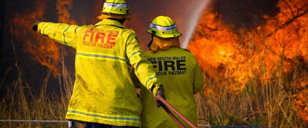 two firefighters spraying water on a bushfire