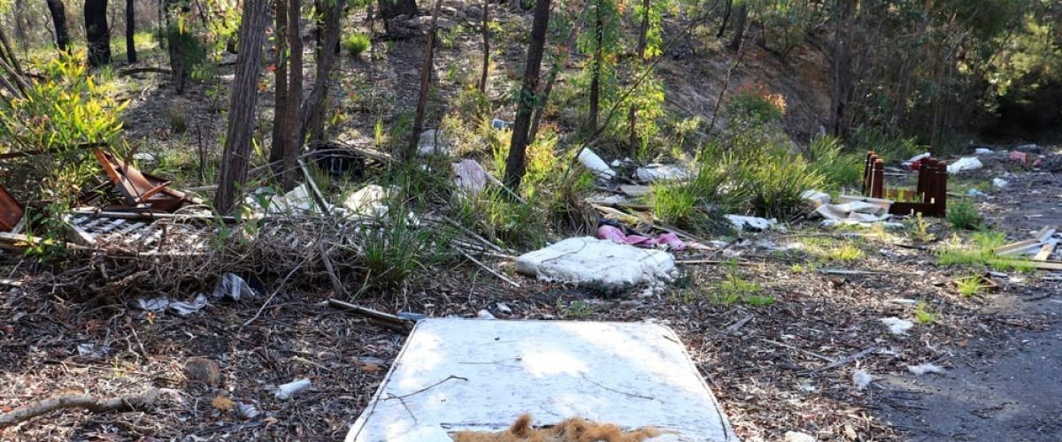 Litter,And,Illegal,Dumping,In,Country,Area,,Nsw,,Australia